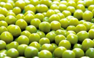 Диета с зеленым горошком
