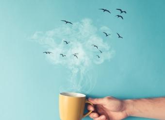 Как успокоить нервы – несколько действенных способов
