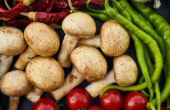 Грибная диета: как потерять 4 килограмма за один месяц