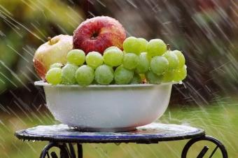 Виноградная диета: как избавиться от 2 кг лишнего веса всего за 4 дня